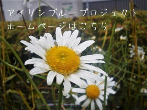 A (1).jpg